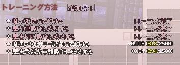 mabinogi_2015_12_02_005.jpg