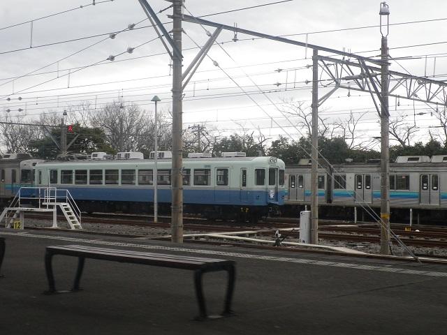 IMGP8761.jpg