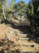 砥石城の急登