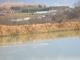 ため池の水鳥