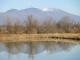 池に映る浅間山