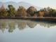 ため池の朝モヤ