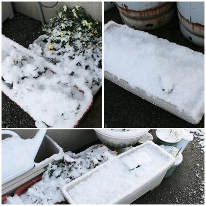 雪プランター