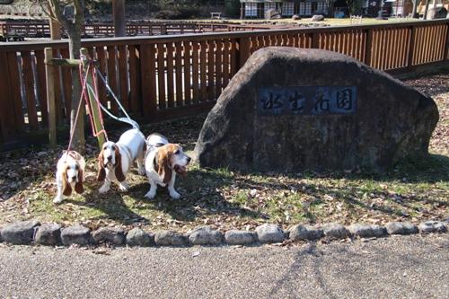 山田池公園00007