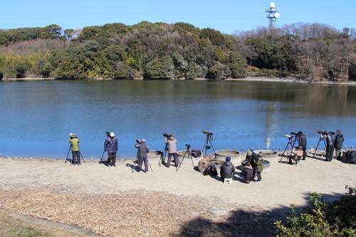 山田池公園00019