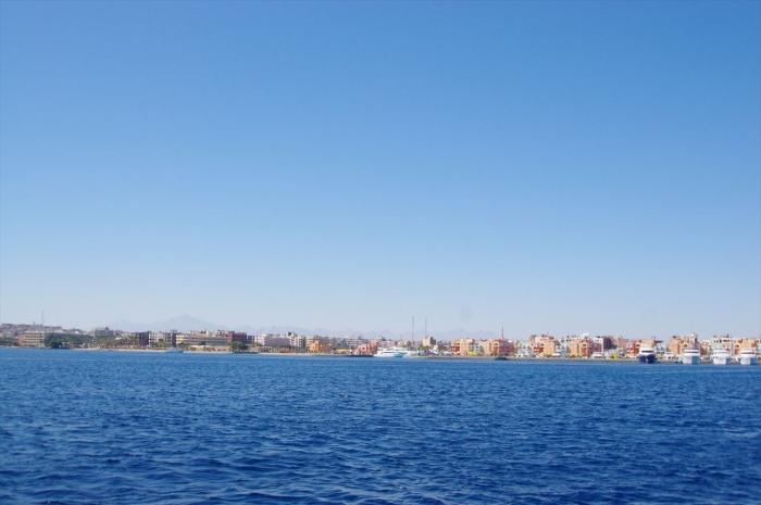 ハルガダでダイビング (6)