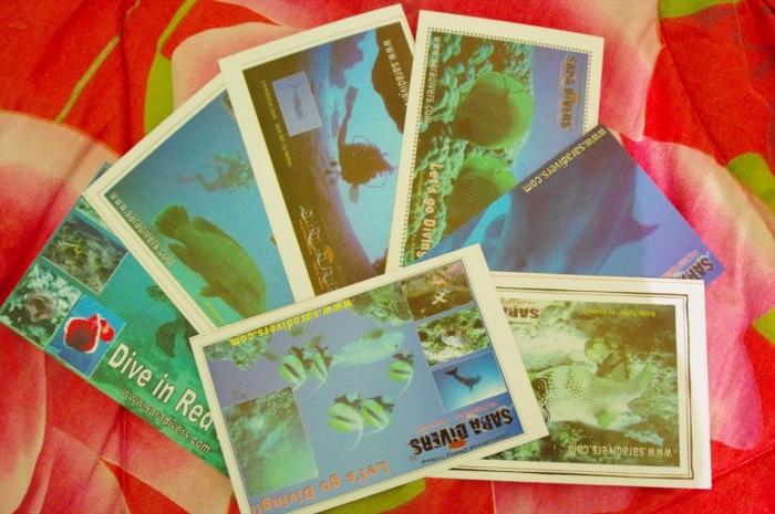 サラダイバーズポストカード