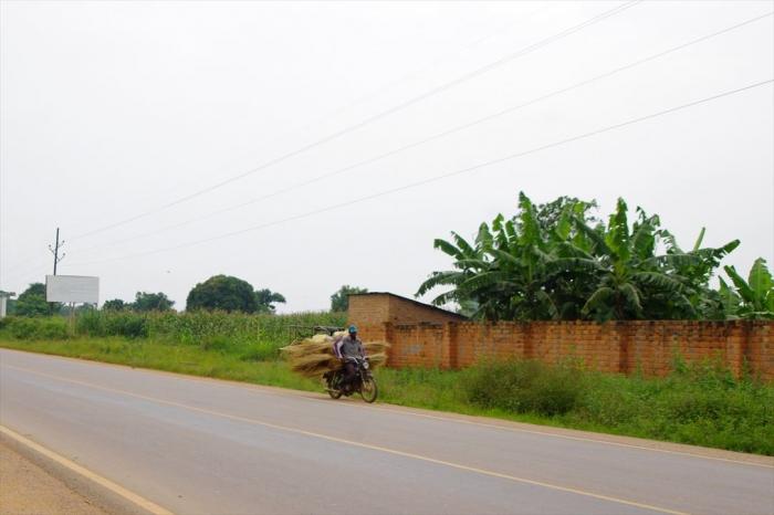 ウガンダ赤道 (21)
