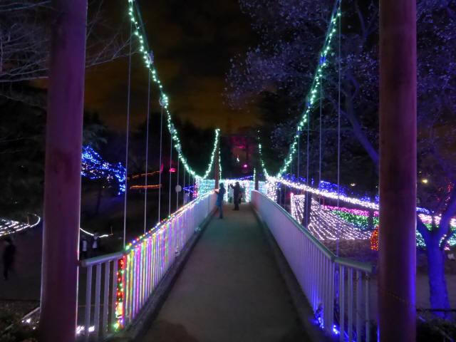 新池公園の吊橋3