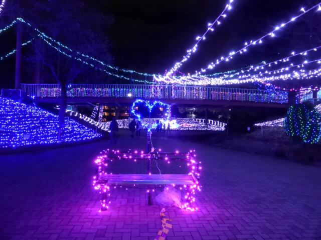 新池公園の吊橋7