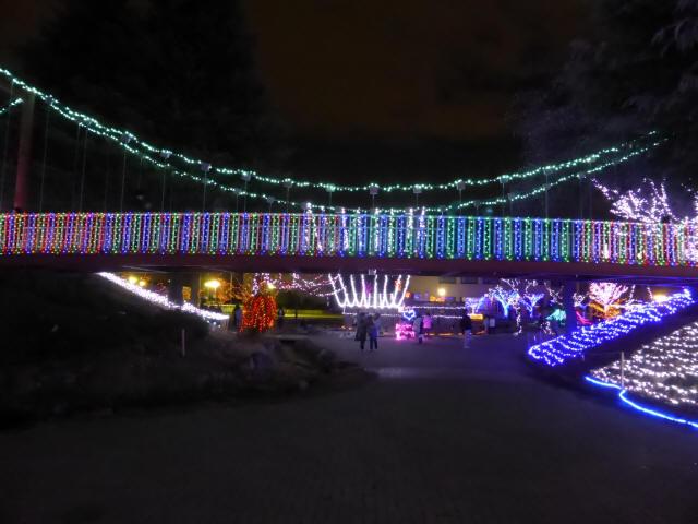 新池公園の吊橋0