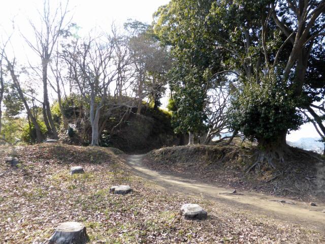 韮山城址5