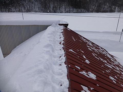 16 1/26 雪下ろし半分
