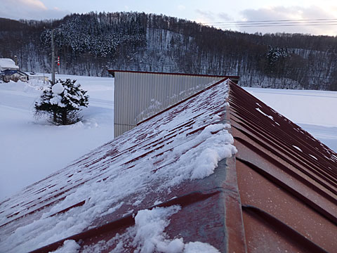 16 1/26 雪下ろし 完了