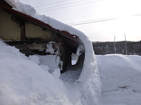 16 2/20 雪のトンネル