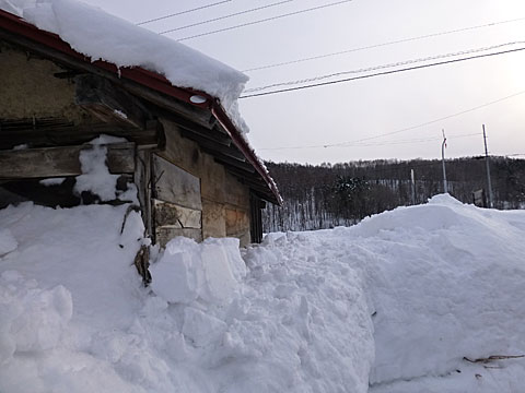 16 2/20. 雪投げ終了