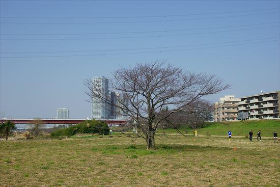 DSC06311.jpg