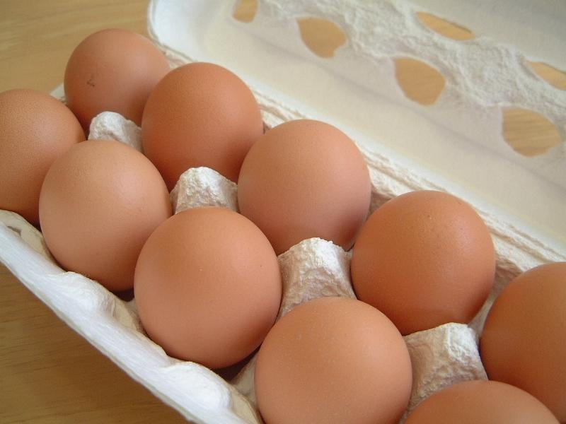 egg002 (800x600)