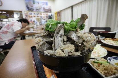 16-01-13_kyan-okinawa-0012.jpg