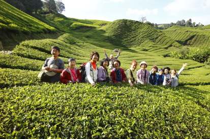 16-02-17_mossiforest-malaysia-0427.jpg
