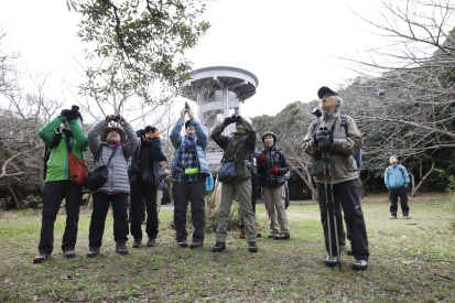 daibusamisaki-chiba_15-12-22-0046.jpg