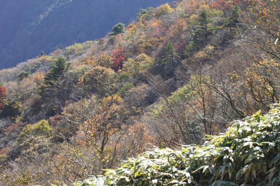 ryugatake-yamanashi_15-10-28-0139.jpg