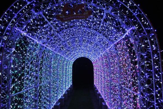 イルミなトンネル