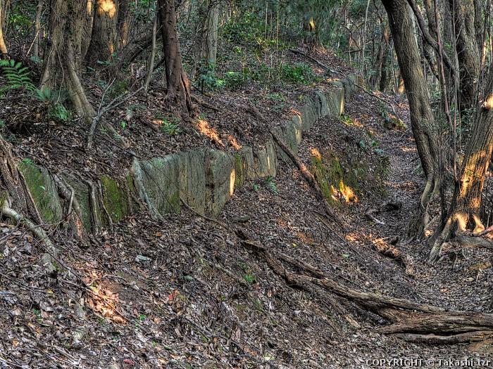 高良山神籠石