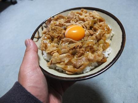 ラーメン丼