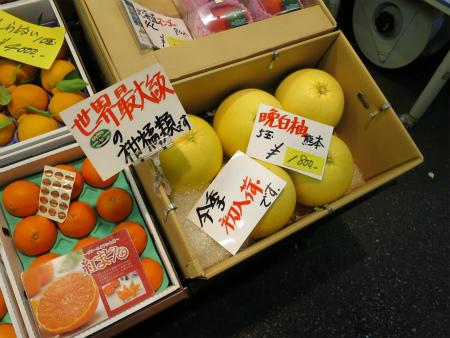 巨大柑橘類!