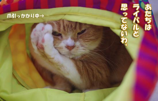 I^-^¥q-うぇ^q-w^えくぇq9593のコピー