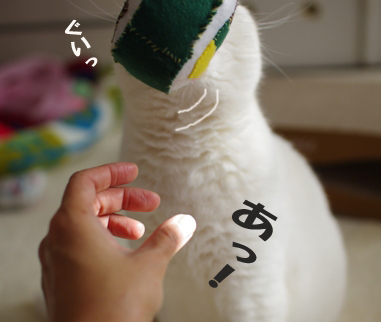 ぎゅ^あs^¥d^あsだのコピー
