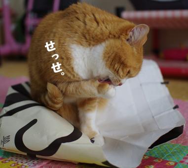 アンリの袋s^-あd0さdのコピー
