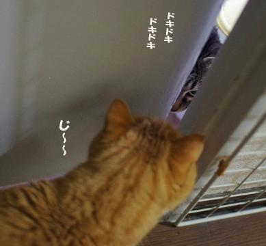 どきどk99^¥d^-^ささsだのコピー