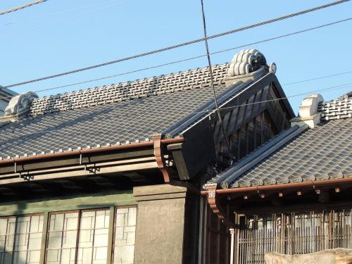 151027sawara50.jpg