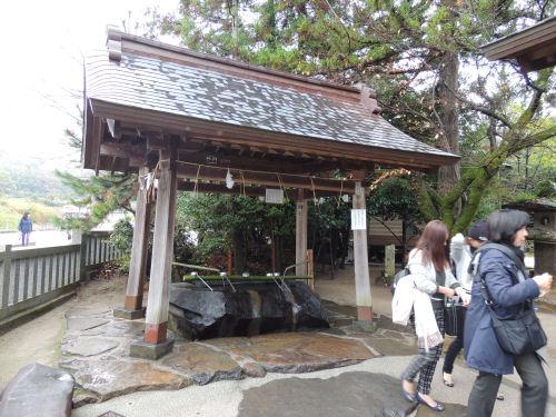 151210yaegaki07.jpg