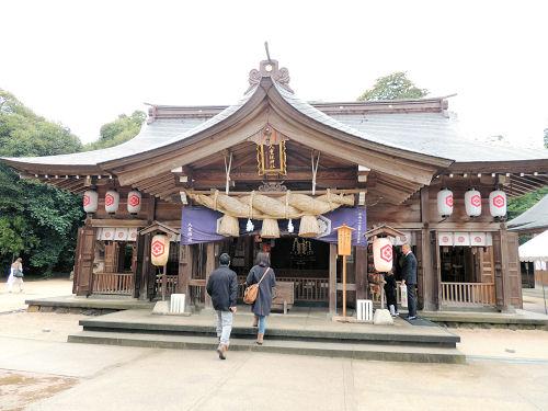 151210yaegaki15.jpg