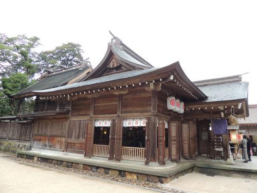151210yaegaki16.jpg
