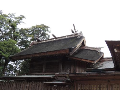 151210yaegaki21.jpg