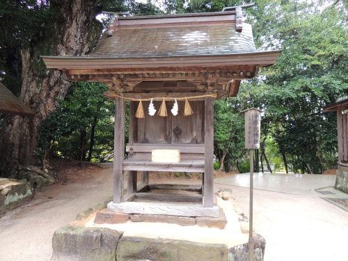 151210yaegaki29.jpg