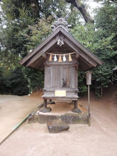 151210yaegaki32.jpg