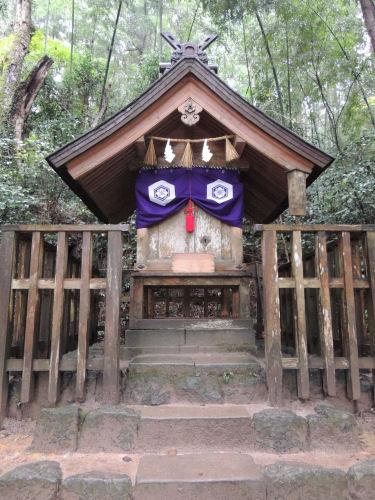 151210yaegaki59.jpg