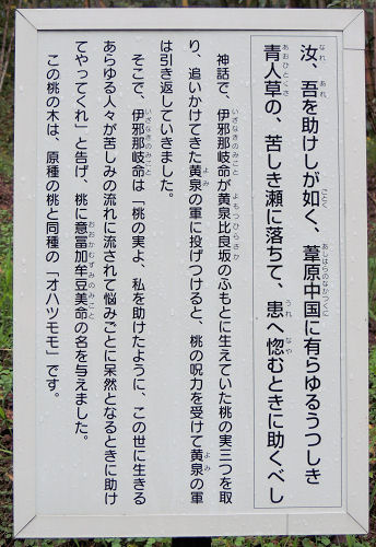 151221yomotsu11.jpg
