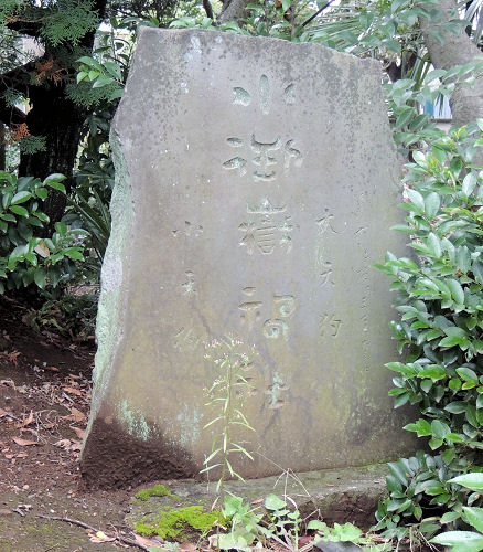 151224hikawa46.jpg