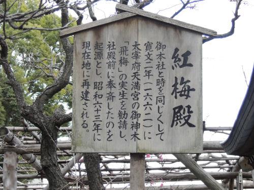 160111tenjin33.jpg