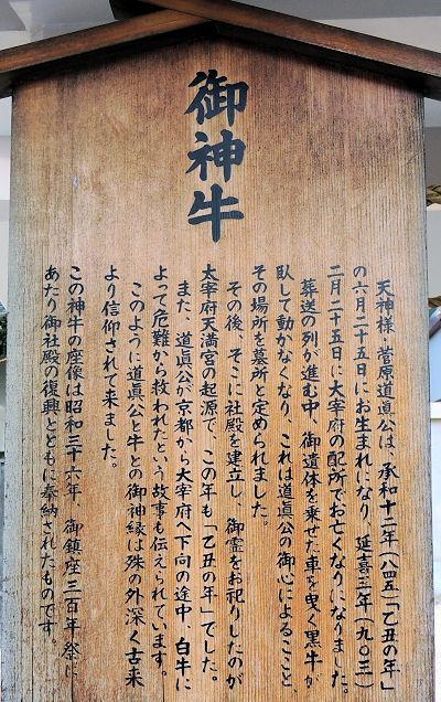 160111tenjin37.jpg