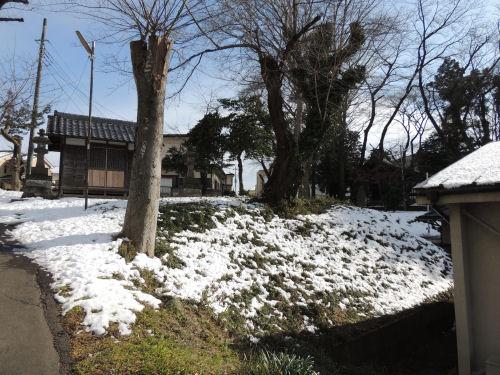 160121fuji50.jpg