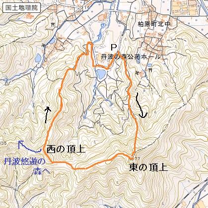 16_1_2_mori_tizu.jpg