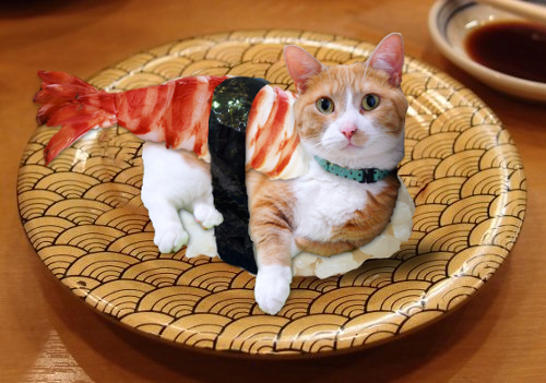 Loren-sushi.jpg