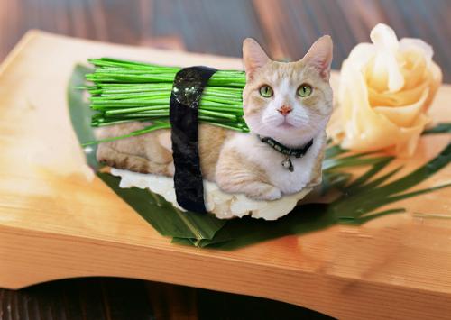 Luke-sushi.jpg